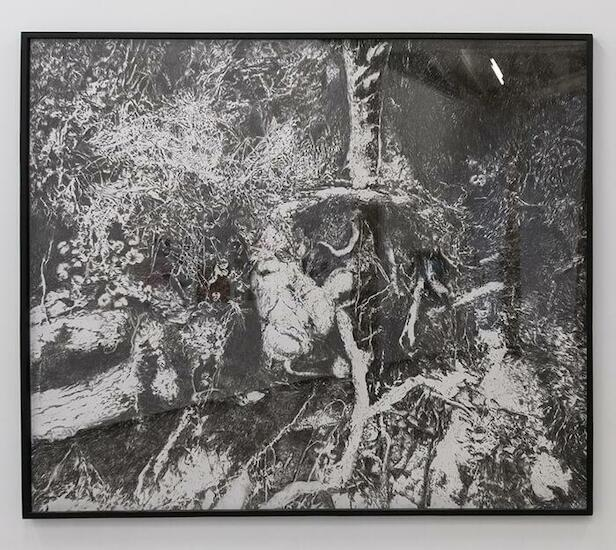 Ana Gallardo. Serie Bocetos para la construcción de un paisaje: la Laguna de Zempoala, 1965-2010